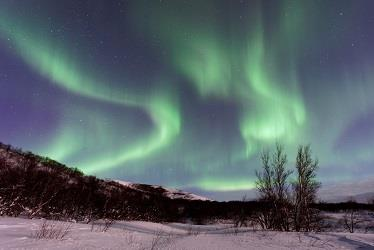 The Northern Lights and 5 HTP Powder
