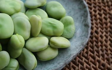 Broad Bean Protein