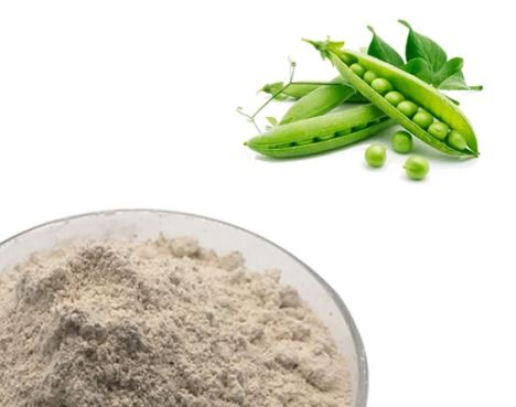 Wholesale Price GMO Free Chinese Pea Protein Powder
